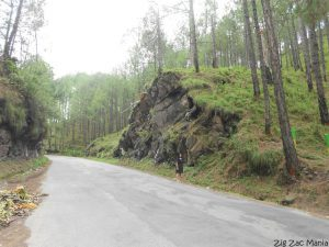 A Short And Wonderful Trip To Kasauli