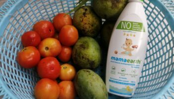 Mamaearth Plant-Based Multi Purpose Cleanser|Review